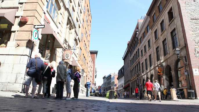 Montreal: 3.5-Hour Guided Bus Tour