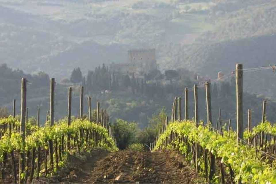 From Florence: Full-Day Tuscan Wine Tour with Lunch