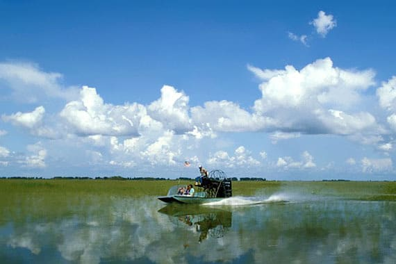 Best Of Everglades Tour