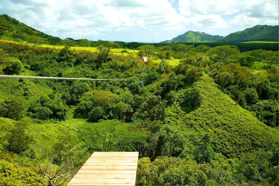 Eco-Friendly 8-Line Zipline Adventure In Poipu