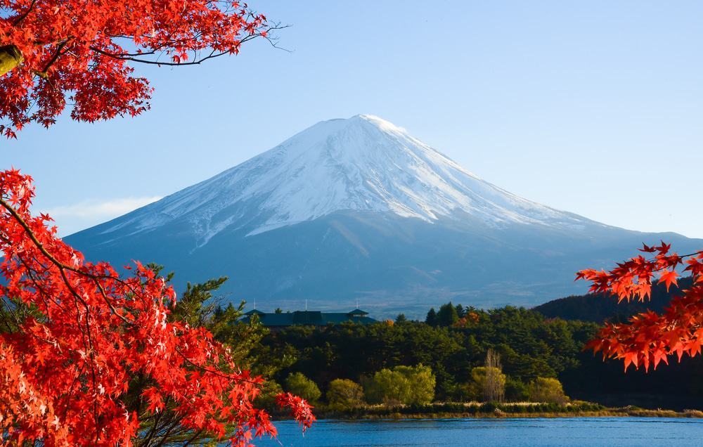 15 Best Japan Tours - The Crazy Tourist