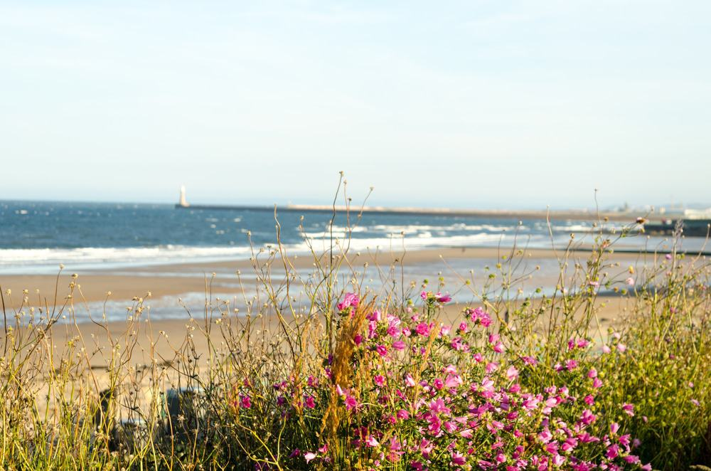 Roker and Seaburn Beaches