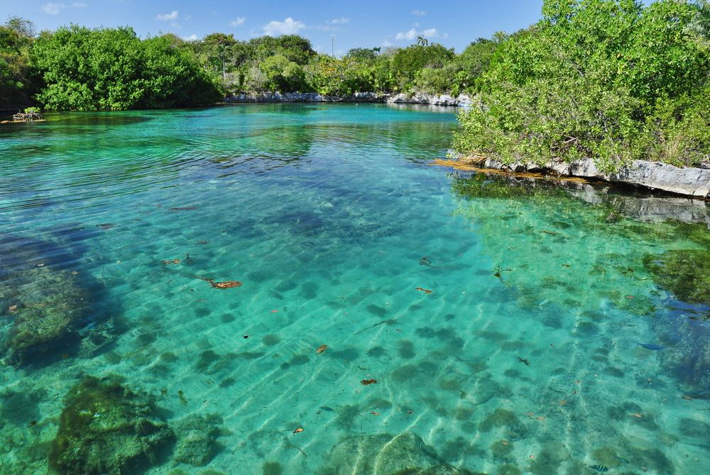 Chichen Itza, Xcaret, and Xel-Ha 3 Tours Combo Package