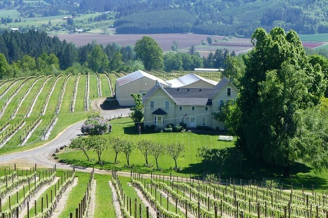 Willamette Valley Wine-Tasting Tour