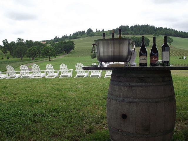 Willamette Valley Wine Tour With Tastings