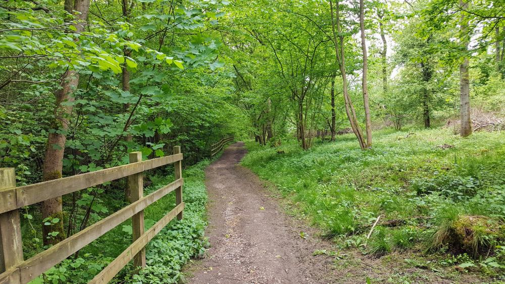 Fermyn Woods Country Park