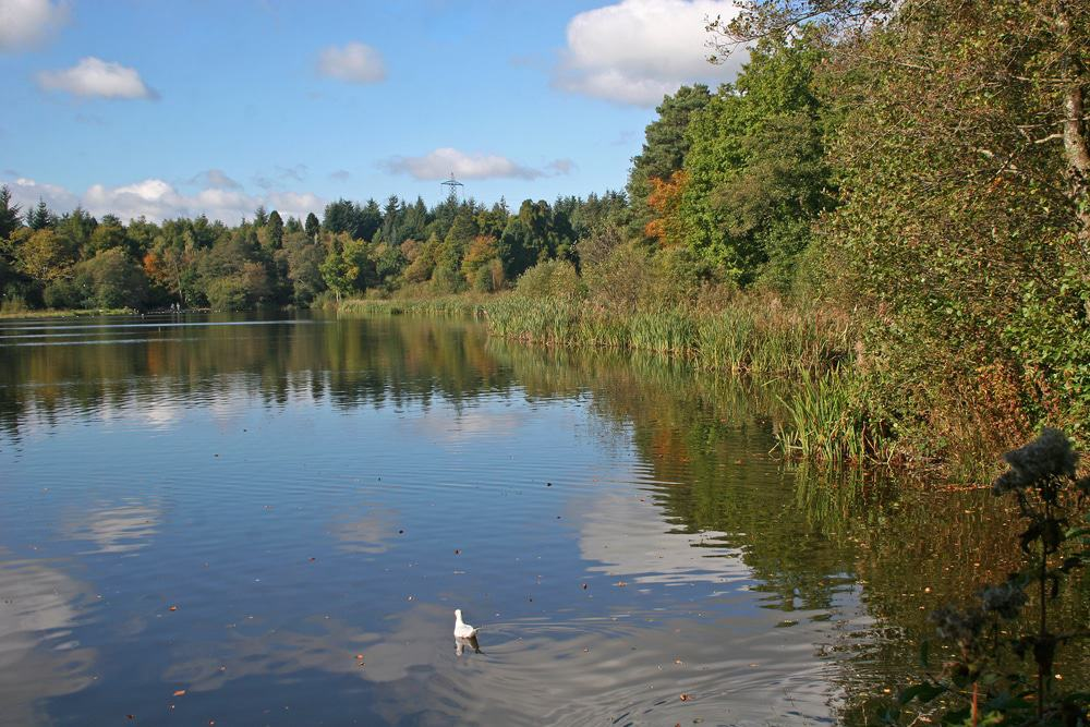 Stover Country Park