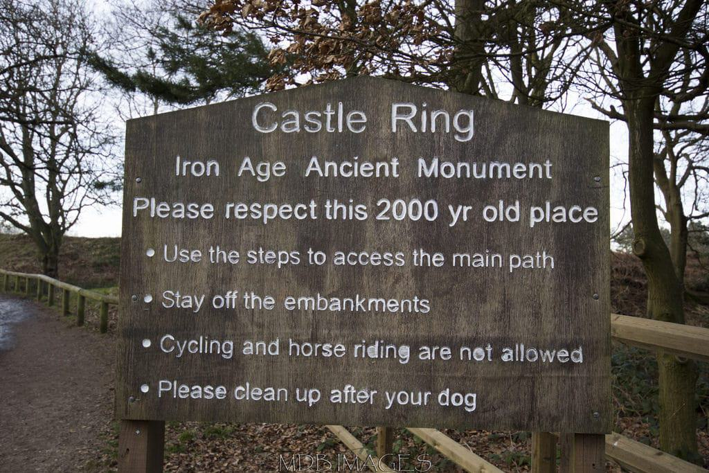 Castle Ring