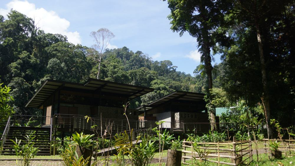 Rainforest Lodge Danum Valley