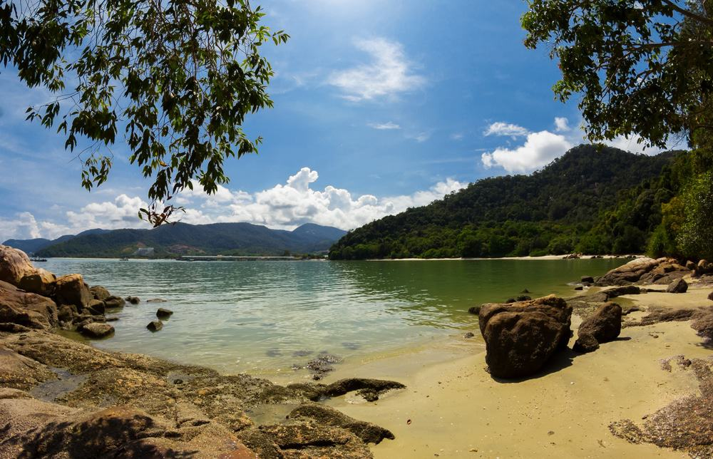 Penang National Park