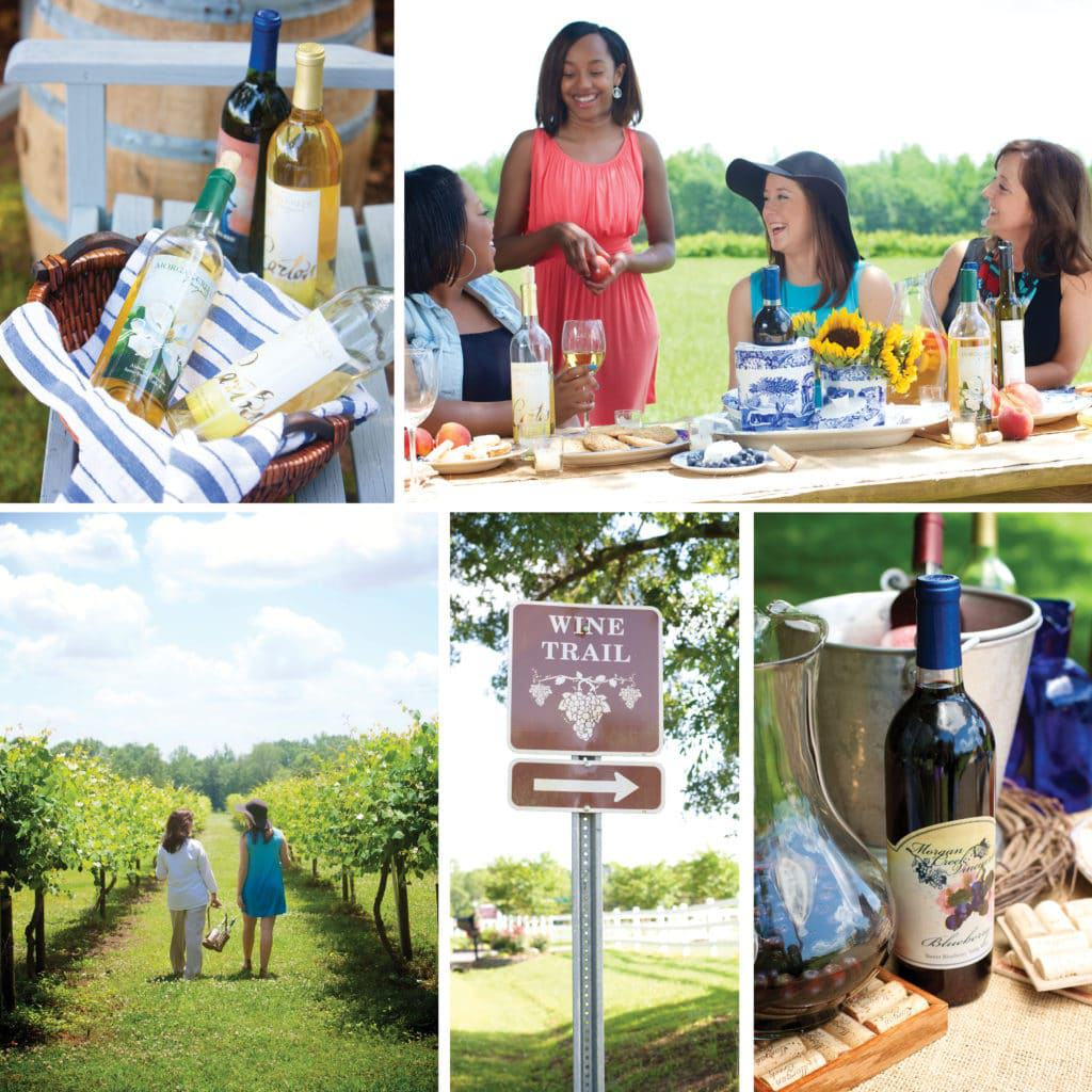 Morgan Creek Vineyards, Alabama