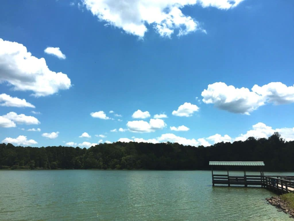 Walker County Lake