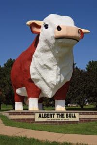 Albert The Bull, Audubon