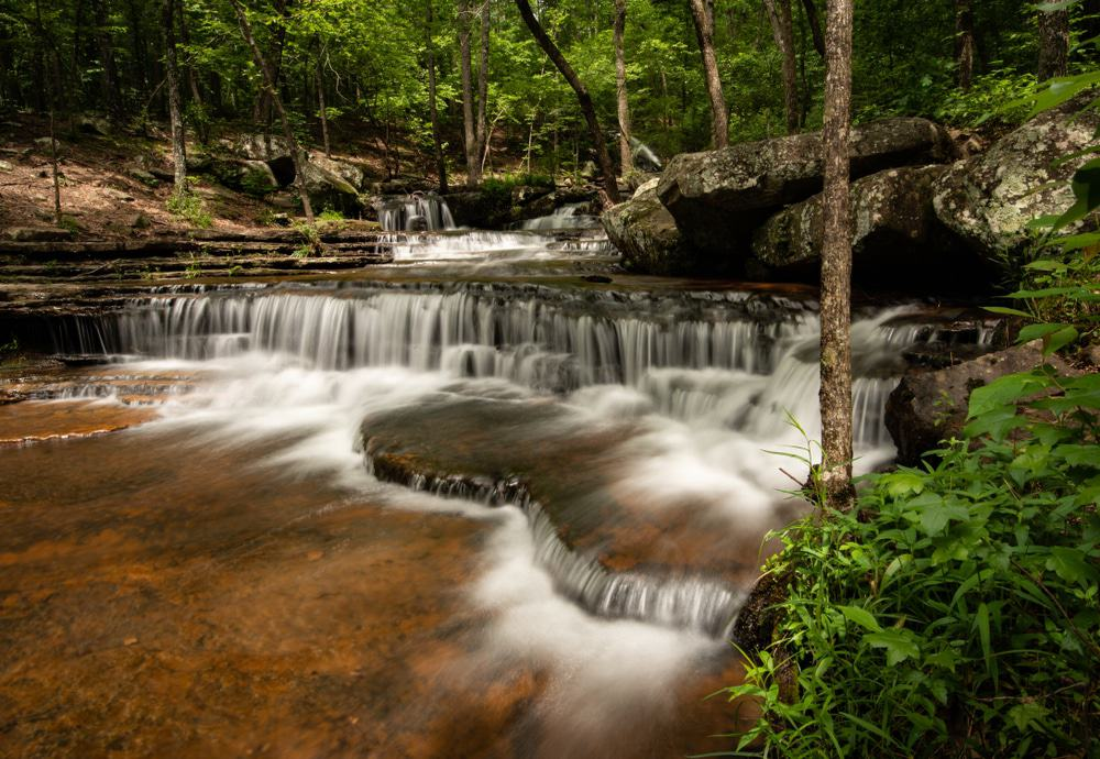 Collins Creek Cascade and Trout Stream, Heber Springs