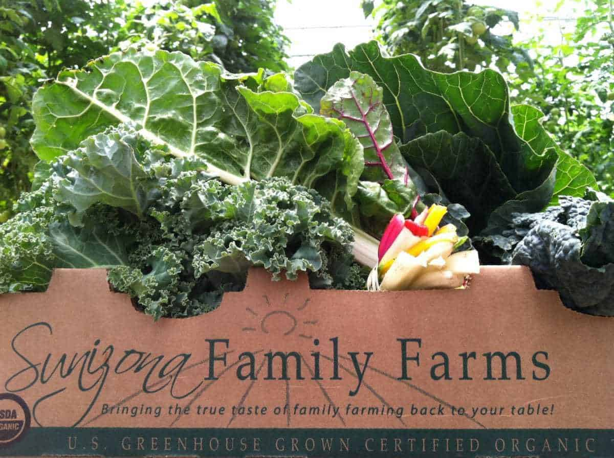 Sunizona Family Farms