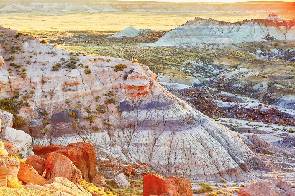 Painted Desert Arizona