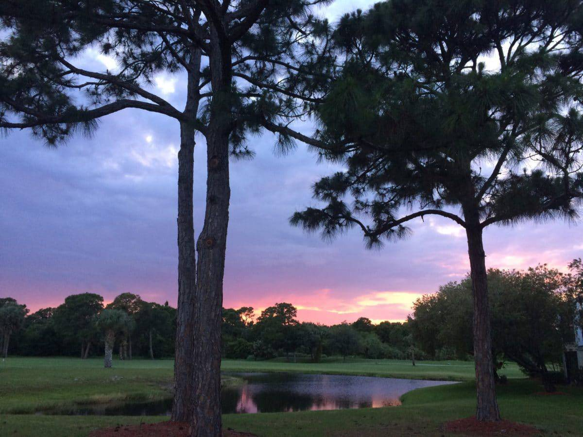 Gator Trace Golf & Country Club