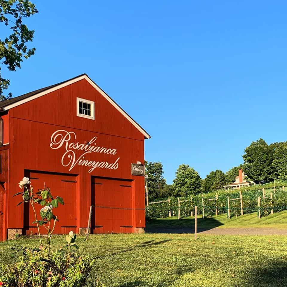 Rosabianca Vineyards