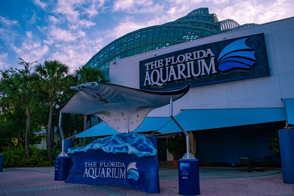 The Florida Aquarium, Tampa