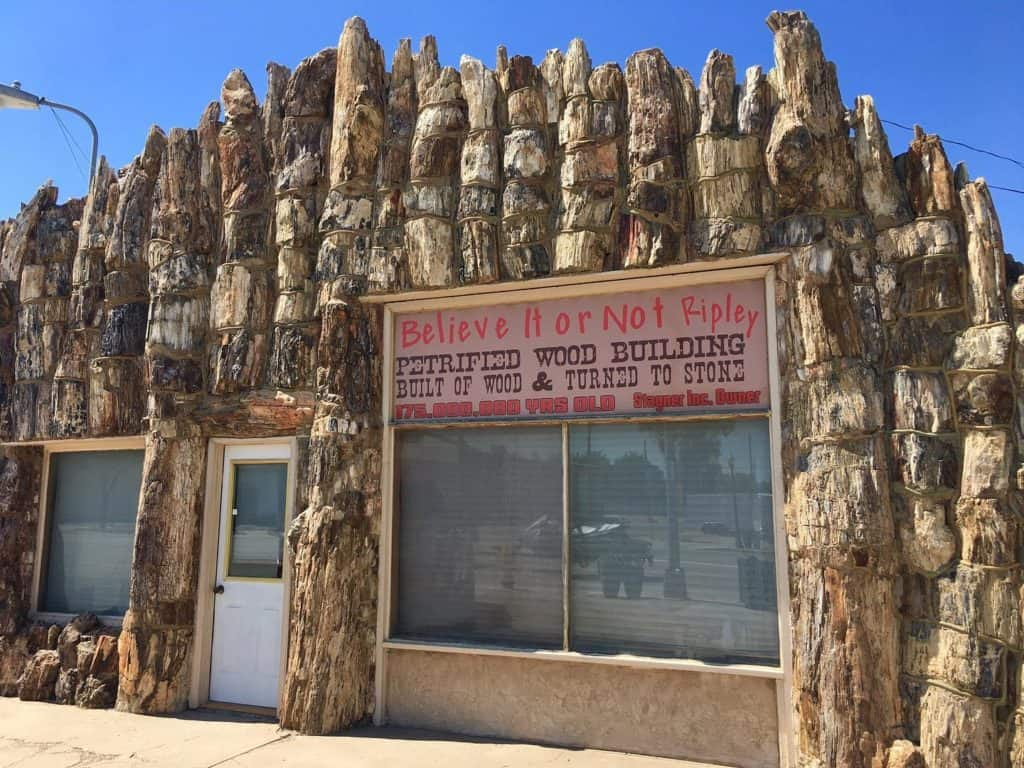 Petrified Wood Gas Station, Lamar