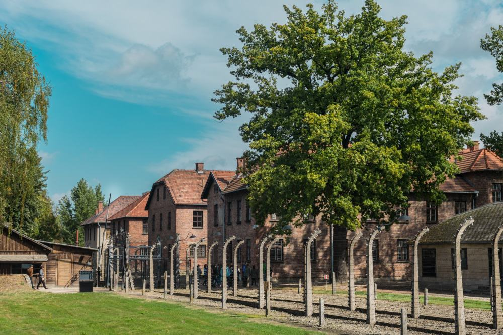 Auschwitz Gate and Houses
