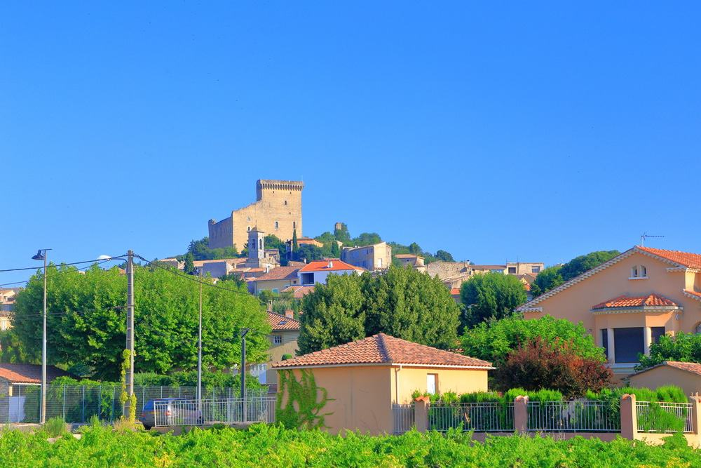 Vineyards and Castle, Châteauneuf du Pape