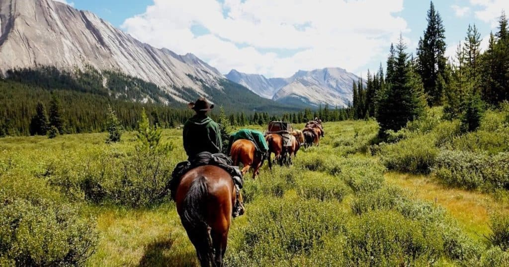 Helicopter Tour and Horseback Ride Combo