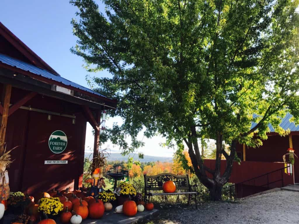 Five Fields Farm – Gyger Orchards