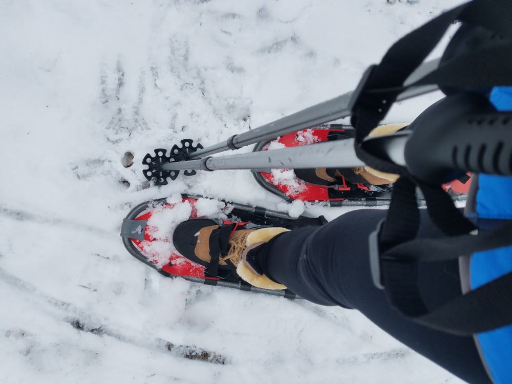 Annual Norway Winter and Snowshoe Festival