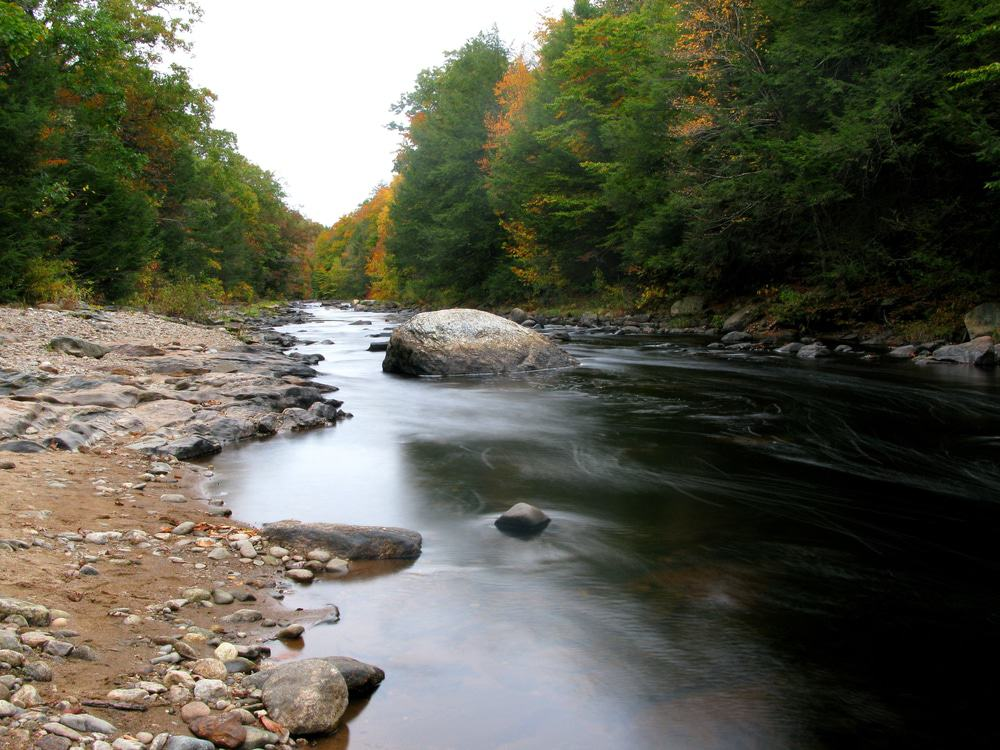Salmon River State Forest