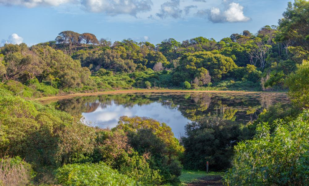Tower Hill Wildlife Reserve