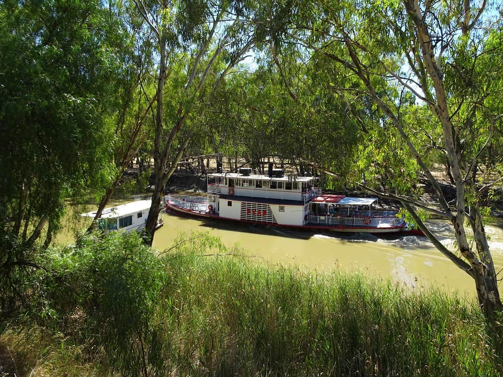 Murray River Cruise (PS Pyap)